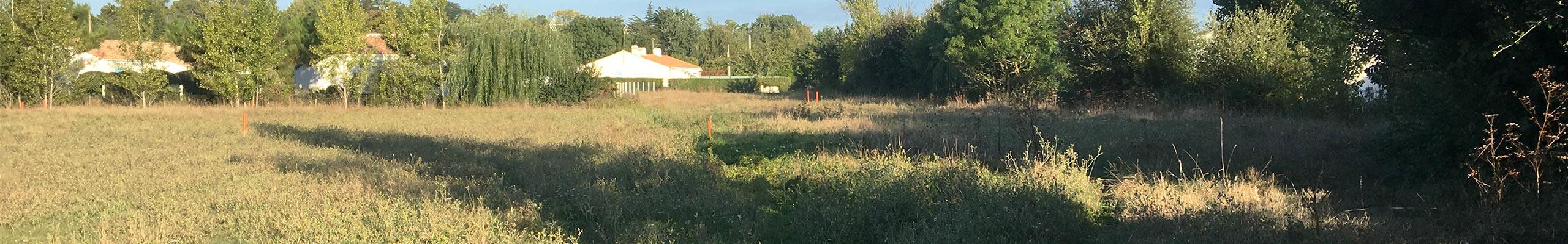 terrain-en-vente-La-Barre-de-Monts